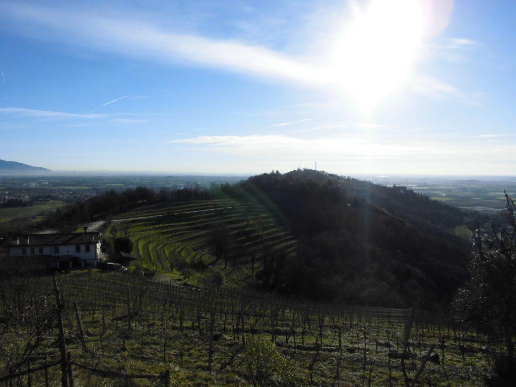 写真:オルファノ山からブレーシャ方面を望む  -メローネ/F.T.LLC-